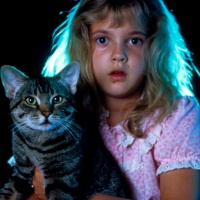 Stephen King's Cat's Eye (1985) วันผวา