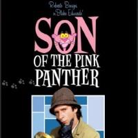 Son of the Pink Panther (1993) มือปราบ พิ้งค์แพนเตอร์