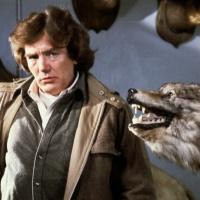Wolfen (1981) โคตรเขี้ยว