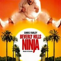 Beverly Hills Ninja (1997) ตุ้ยนุ้ย นินจาฮากลิ้ง