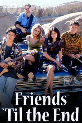 friends-til-the-end-dvd-shannen-doherty-9c4c