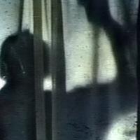 Cries in the Night (1980), โรงแรมดับจิต