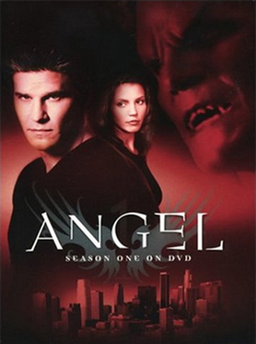 Angel_DVD_Season_(1)